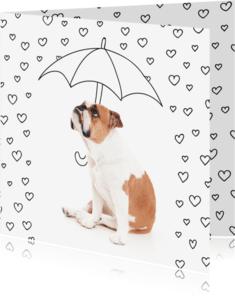 Liefde kaarten - Liefde - Love hartjes bulldog