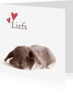 Liefde kaarten - Liefs baby konijntje
