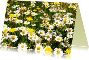 Bloemenkaarten - MadeLIEFJES