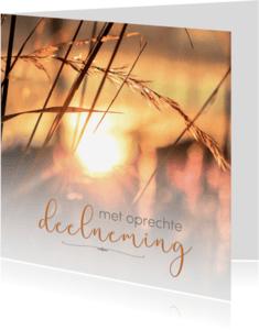 Condoleancekaarten - Met oprechte deelneming - ZO