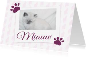Dierenkaarten - Miauw - BK