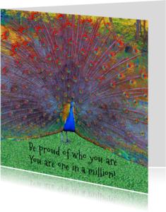 Coachingskaarten - Pauw - wees trots op jezelf