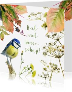 Beterschapskaarten - Pimpelmeesje herfst beterschap