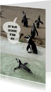 Coachingskaarten - Pinguin Coaches