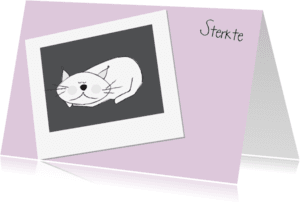 Condoleancekaarten - Rouw kat