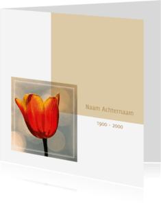 Rouwkaarten - Rouwkaart foto tulp rood geel