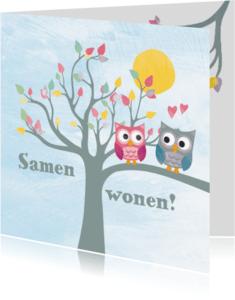 Samenwonen kaarten - Samenwonen uiltjes in boom