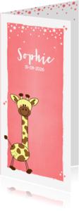Geboortekaartjes - Schattig geboortekaartje meisje met girafje