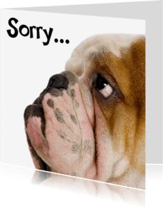 Sorry kaarten - Sorry kaart met droevig hondje