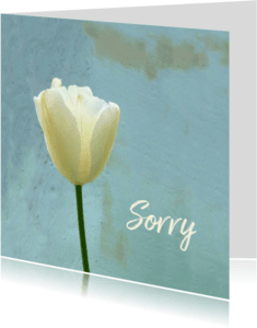 Sorry kaarten - Sorry tulp - vergeving