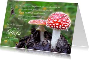 Spreukenkaarten - Spreukenkaart Herfst