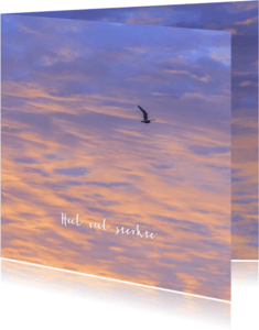 Sterkte kaarten - Sterktekaart avondlucht met meeuw
