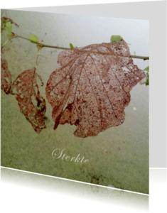 Rouwkaarten - Sterktekaart met bladeren