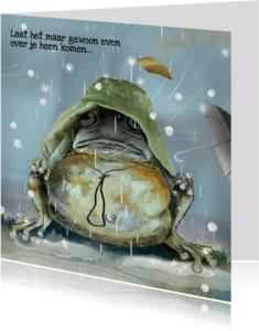 Sterkte kaarten - Sterktekaart - Stormachtig - LH