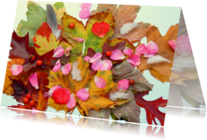 Verjaardagskaarten - Verjaardag Herfst schatten IW