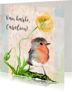 Verjaardagskaarten - Verjaardag lente, klaproos