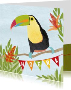 Verjaardagskaarten - Verjaardag toekan en kikker