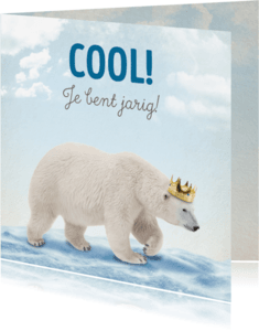 Verjaardagskaarten - Verjaardagskaart Ijsbeer