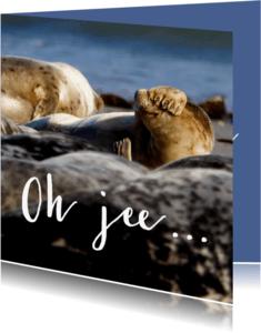 Verjaardagskaarten - Verjaardagskaart te laat - Zeehond - OT
