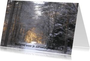 Rouwkaarten - Verlicht pad in donker bos met dankwoord