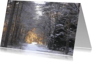Rouwkaarten - Verlicht pad in donker bos