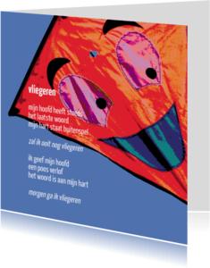 Coachingskaarten - vliegeren - gedicht