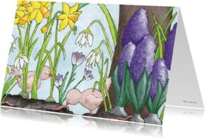 Bloemenkaarten - Vogeltjes in maart