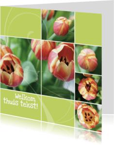 Welkom thuis kaarten - Welkom thuis open tulp