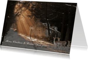 Kerstkaarten - Wintersferen met de kerst