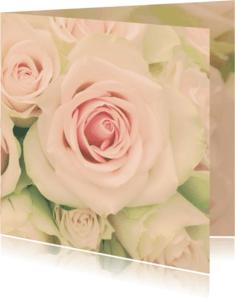 Bloemenkaarten - zachte roos