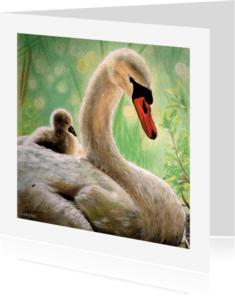 Dierenkaarten - Zwanen - zwaan met jong - kunstkaart
