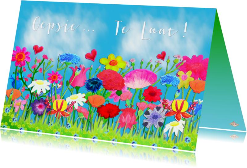 Sorry kaarten - Verjaardagskaart Oepsie PA