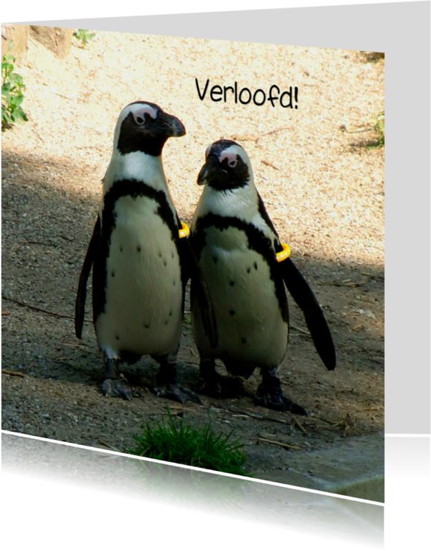 Trouwkaarten - Verliefde - Verloofde Pinguins