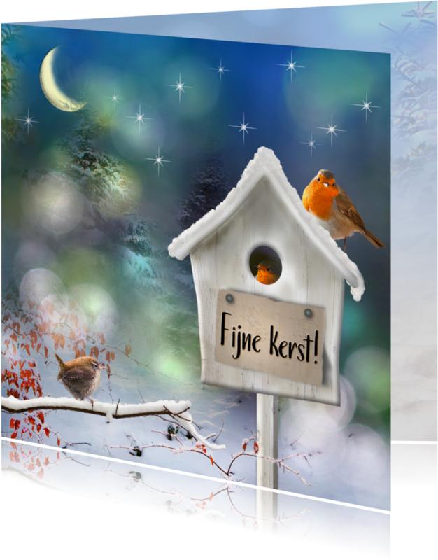 Kerstkaarten - Vogelhuisje in de sneeuw