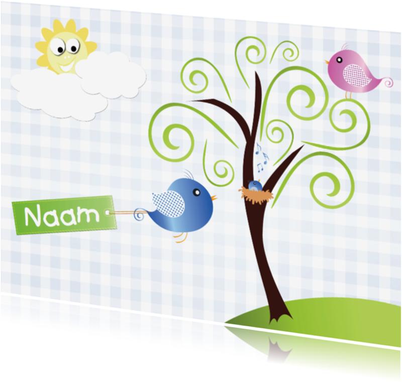 Felicitatiekaarten - vogeltjes met nestje zon en naam jongen
