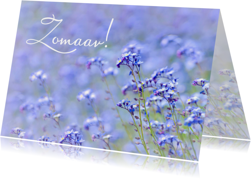 Zomaar kaarten - Zomaar kaart veld bloemen