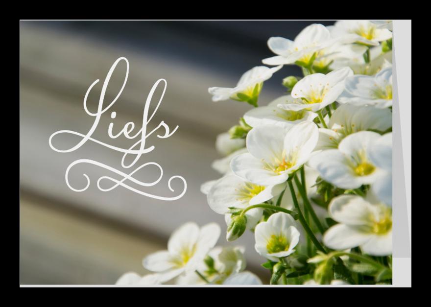 Zomaar kaarten - Zomaar liefs bloemen