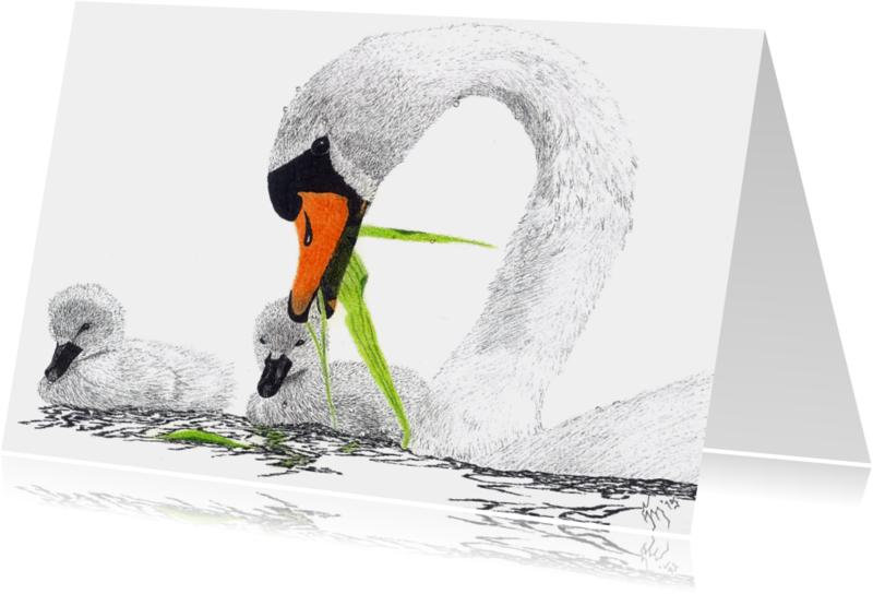 Kunstkaarten - 'Zwaan met jongen'
